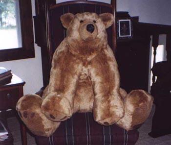 PhotoAlbum, Teddy Bear Patterns, Large Floppy Teddy Bear